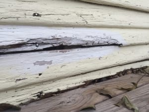 Rotten trim - damaged siding