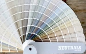 neutral paint color fan