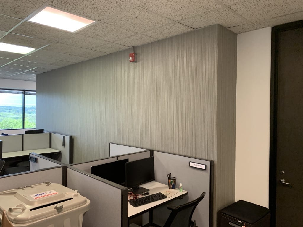 office walls with new wallpaper