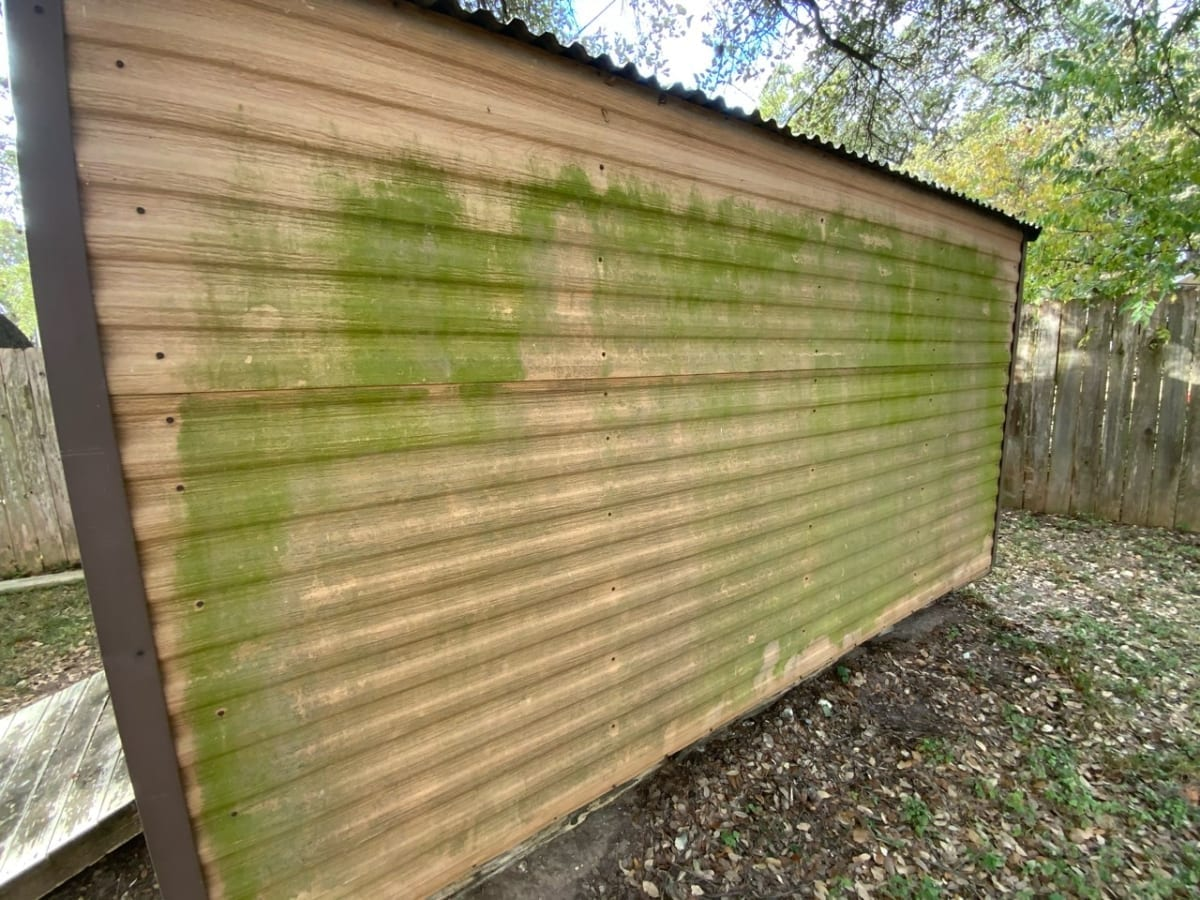shed with mildew