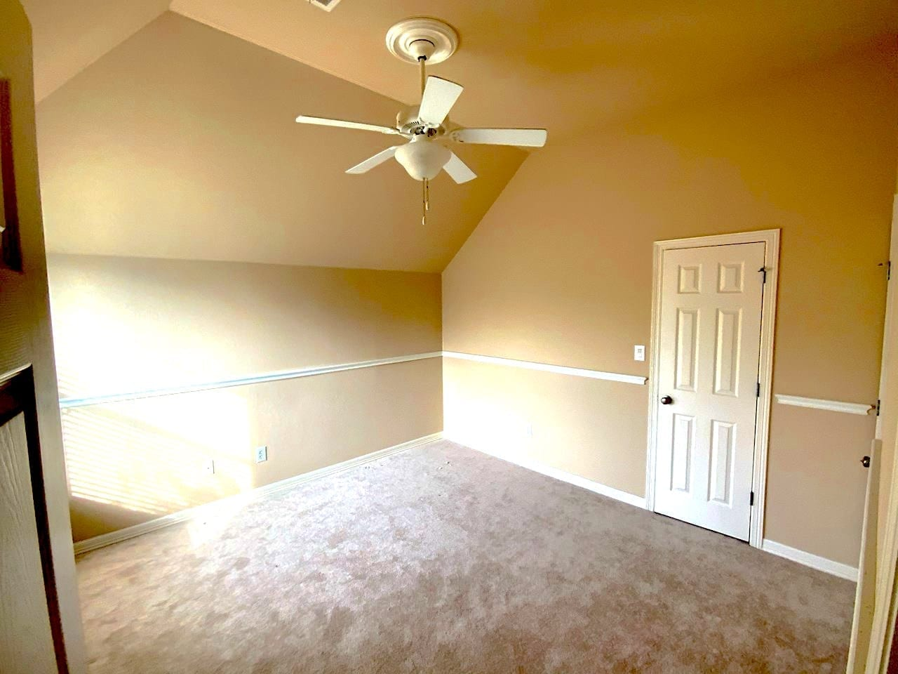 beige bedroom with carpet and chair rail